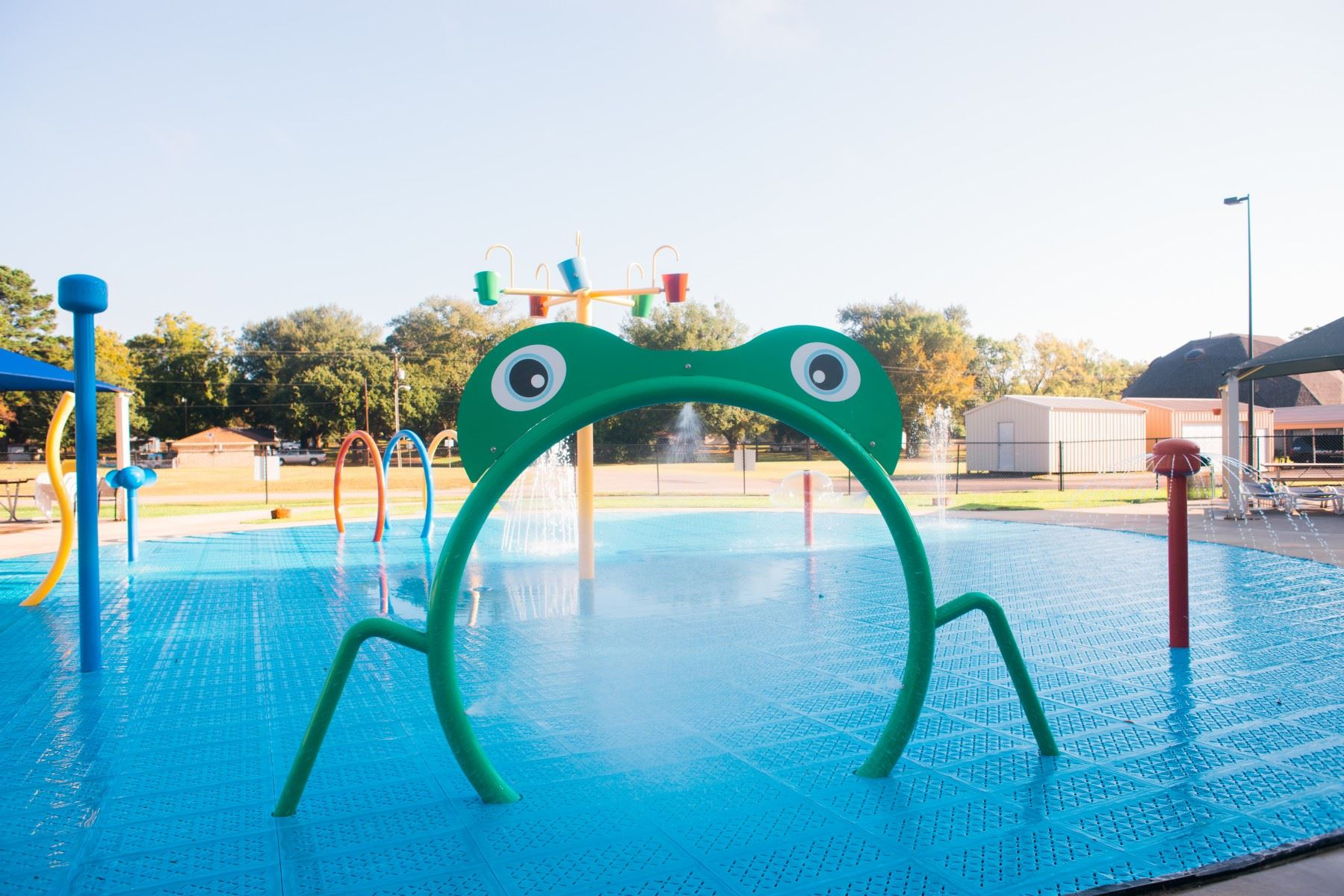 Frog Shaped Water Sprayer at a Splash Pad